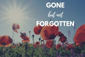 Memorial Day Weekend Gone but not Forgotten