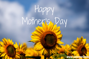 Happy Mother's Day Sunflower Summerfields West