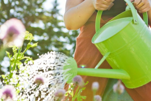 Home Maintenance Tips for Summer