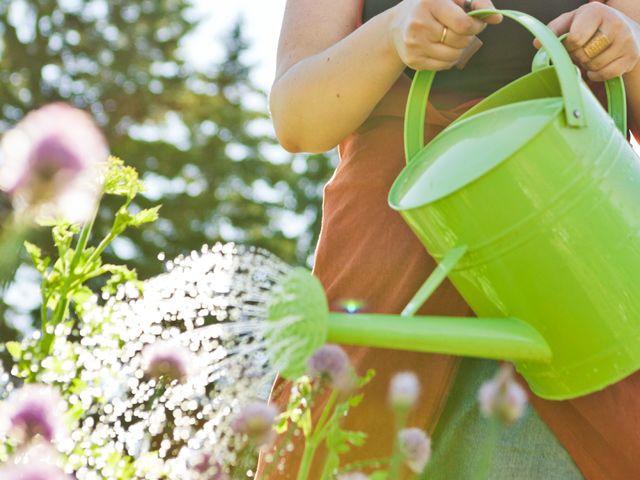Summer Home Maintenance Tipw