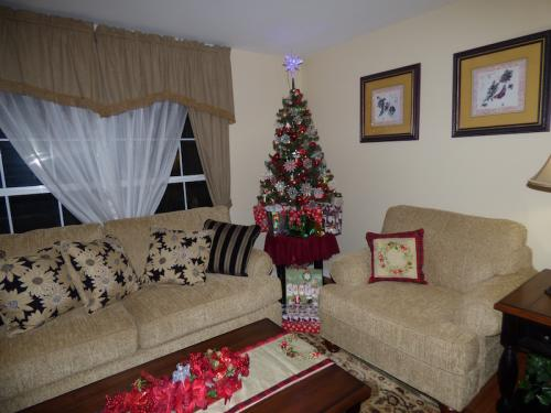 Christmas decorations in the Brook Model Living Room