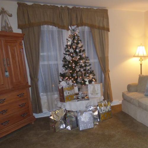 Christmas decorations in a Meadow Model Living Room